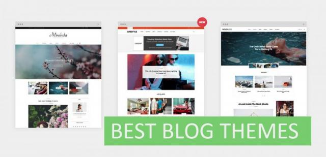 19 Best WordPress Themes For Serious Bloggers